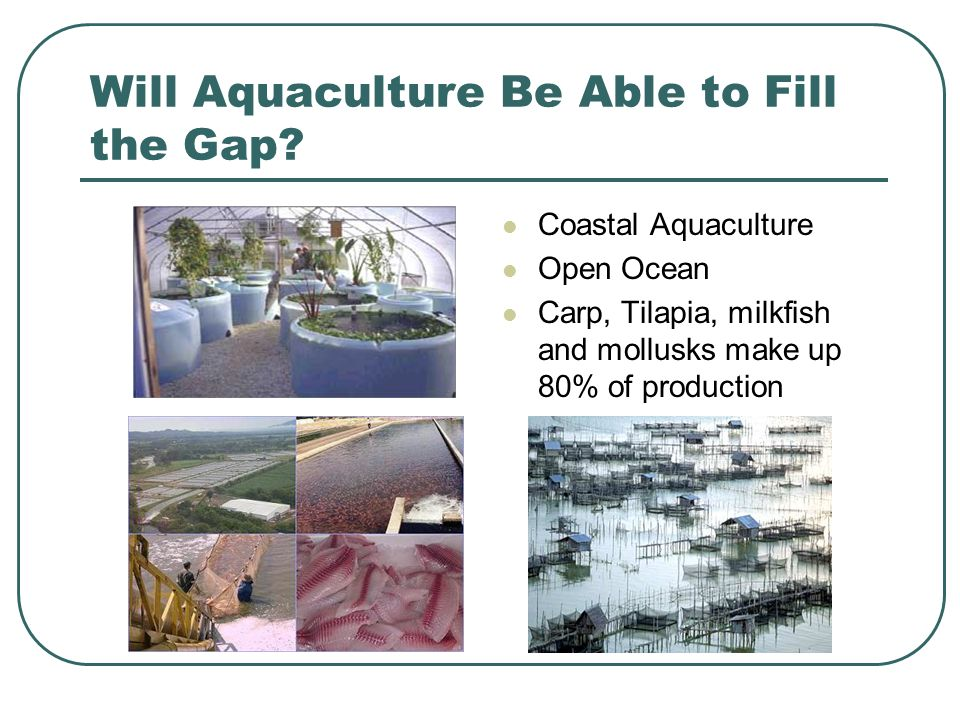 Will Aquaculture Be Able to Fill the Gap.