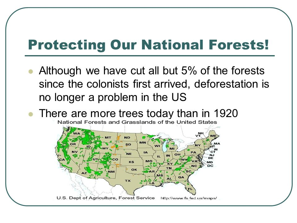 Protecting Our National Forests.
