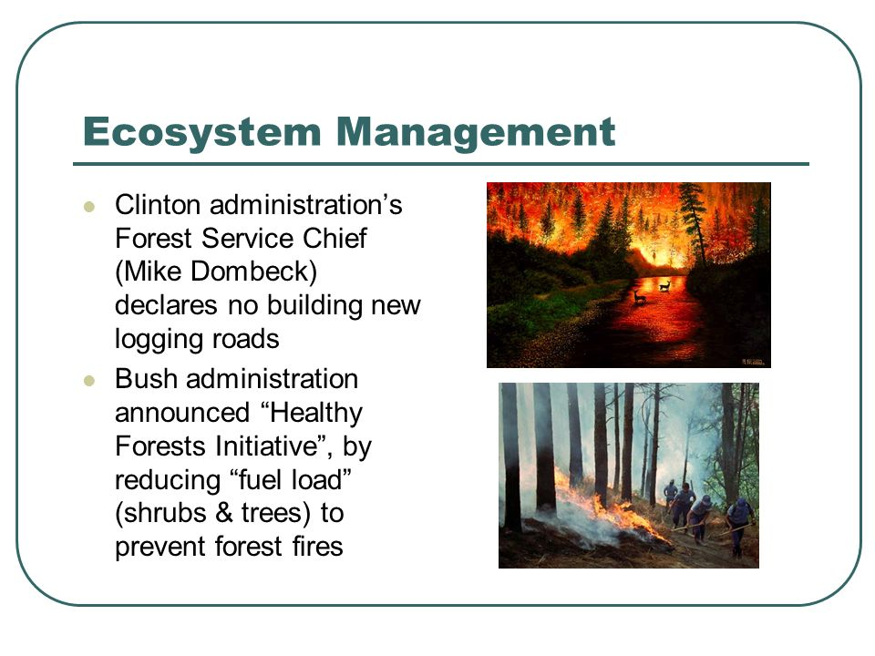 Ecosystem Management Clinton administrations Forest Service Chief (Mike Dombeck) declares no building new logging roads Bush administration announced Healthy Forests Initiative, by reducing fuel load (shrubs & trees) to prevent forest fires