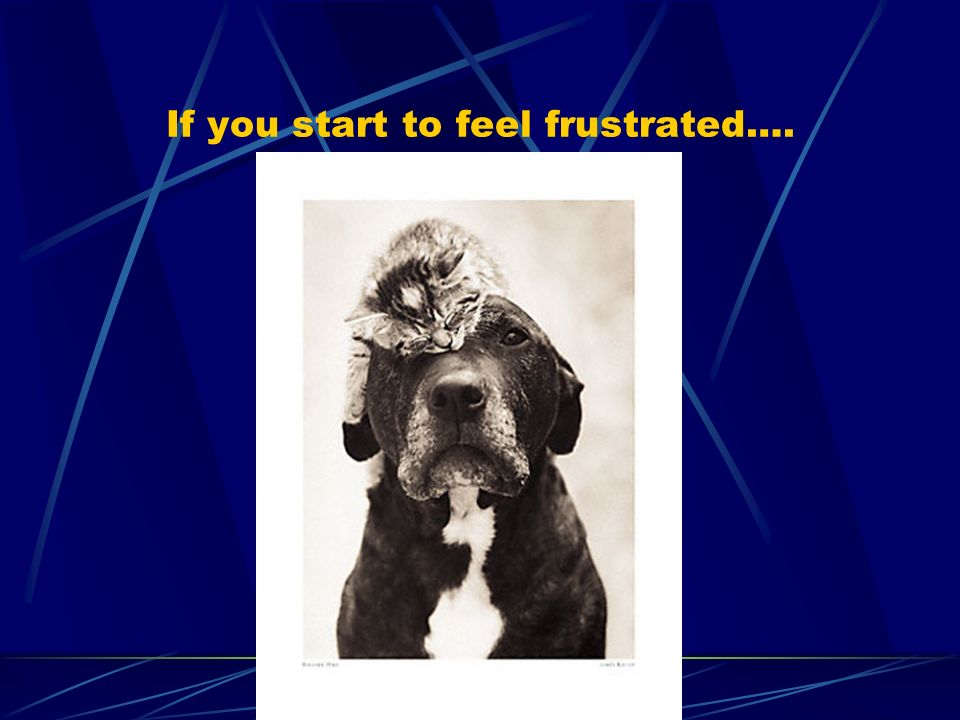 If you start to feel frustrated….