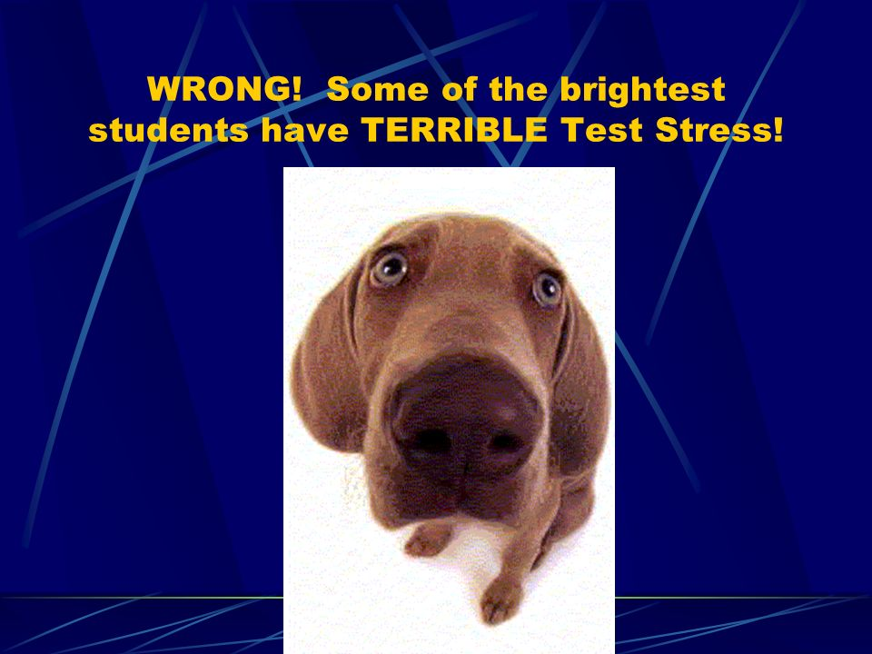 WRONG! Some of the brightest students have TERRIBLE Test Stress!