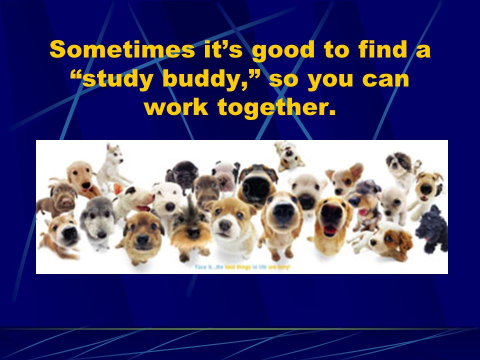 Sometimes its good to find a study buddy, so you can work together.