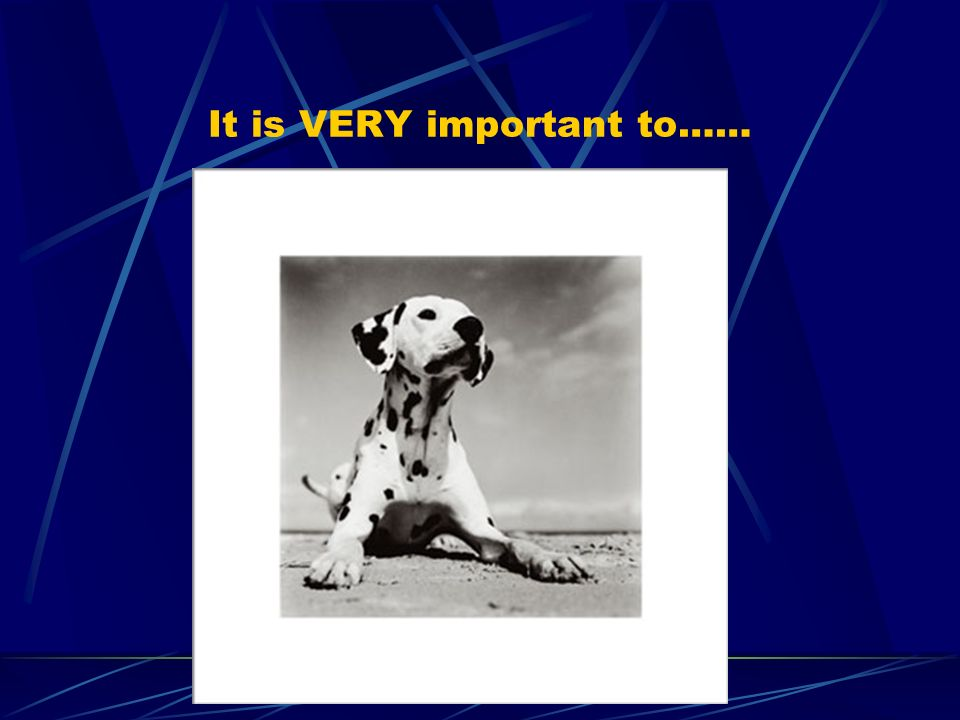 It is VERY important to……