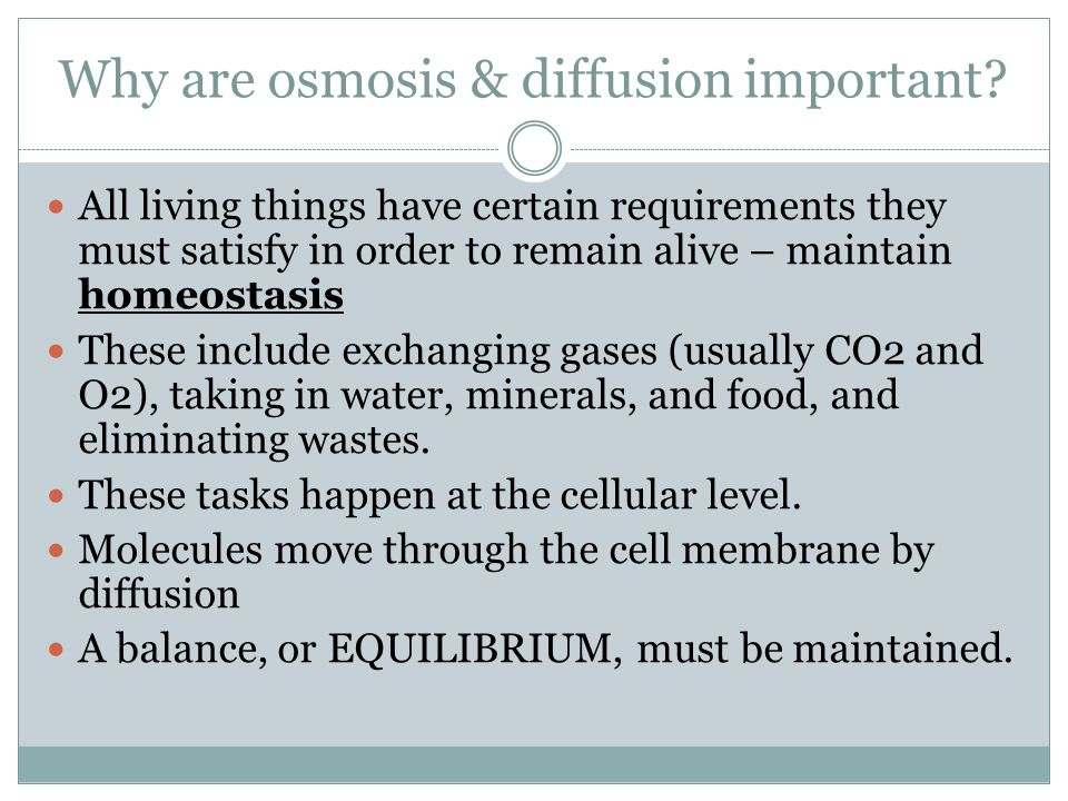 Why are osmosis & diffusion important.