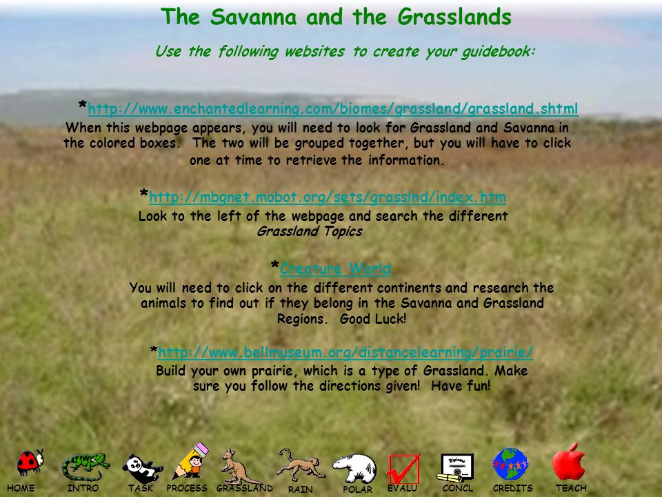 The Savanna and the Grasslands Use the following websites to create your guidebook: * http://www.enchantedlearning.com/biomes/grassland/grassland.shtml http://www.enchantedlearning.com/biomes/grassland/grassland.shtml When this webpage appears, you will need to look for Grassland and Savanna in the colored boxes.