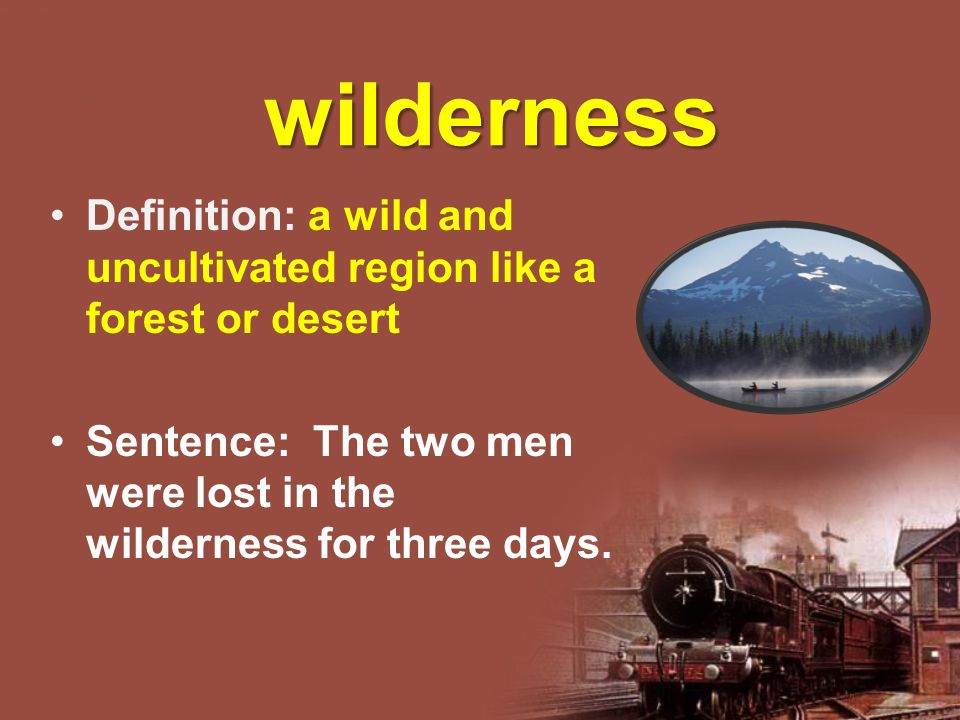 wilderness Definition: a wild and uncultivated region like a forest or desert Sentence: The two men were lost in the wilderness for three days.