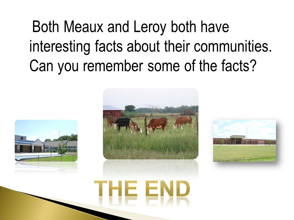Both Meaux and Leroy both have interesting facts about their communities.