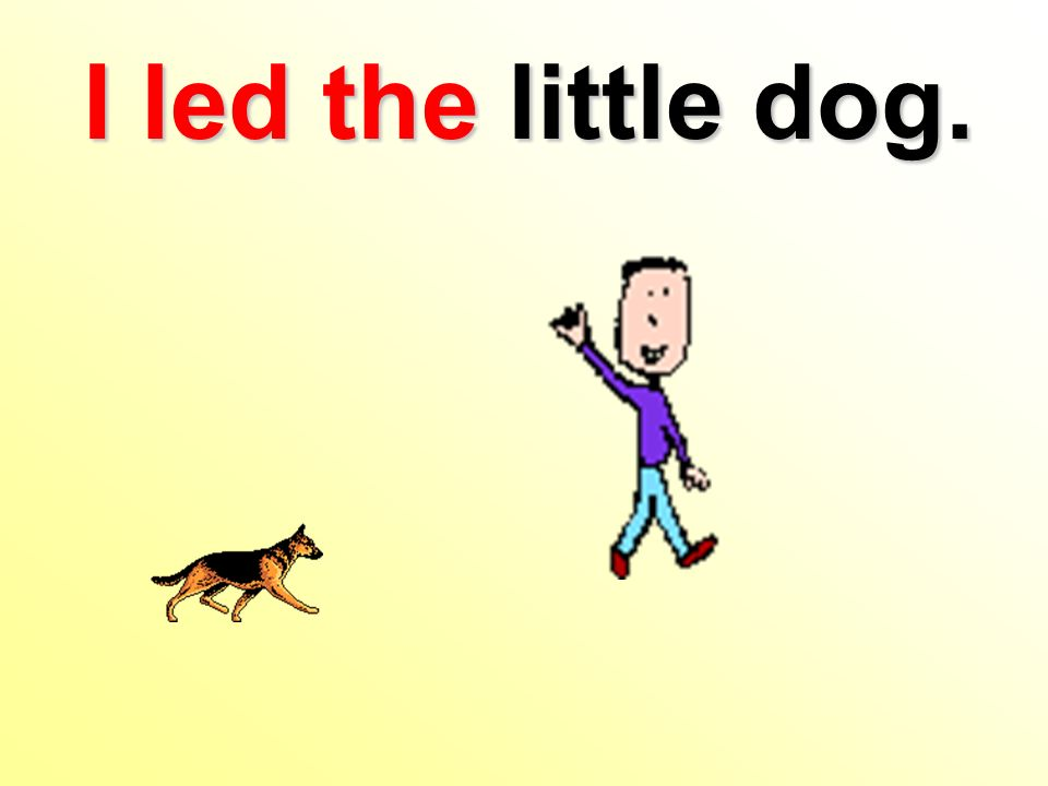 I led the little dog.