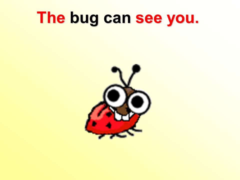 The bug can see you.