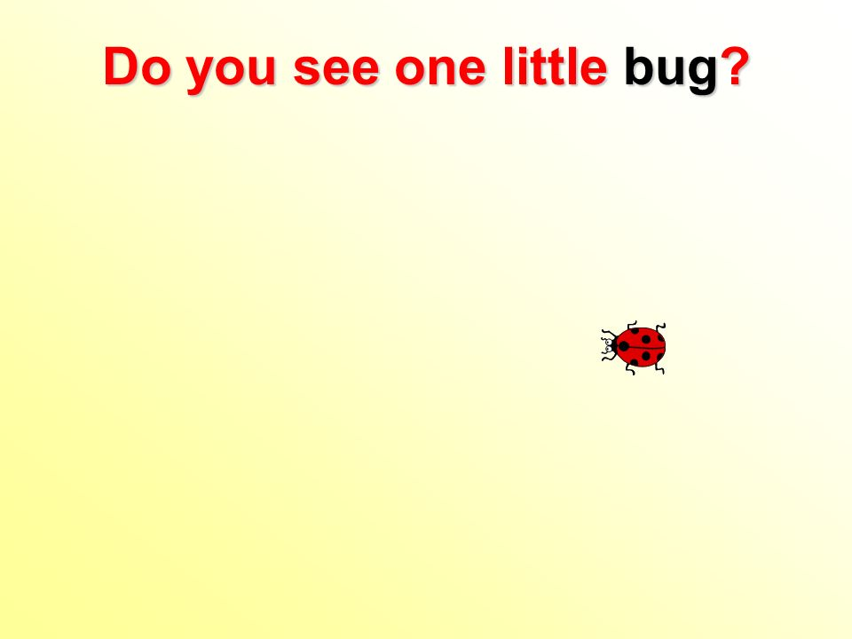 Do you see one little bug