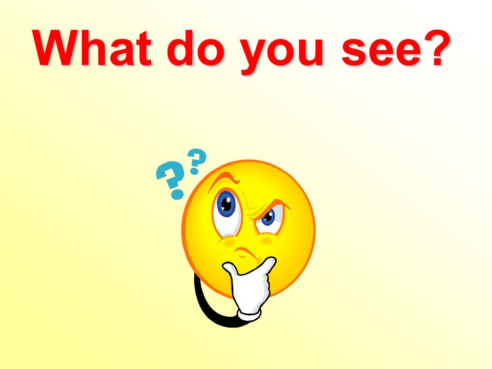 What do you see