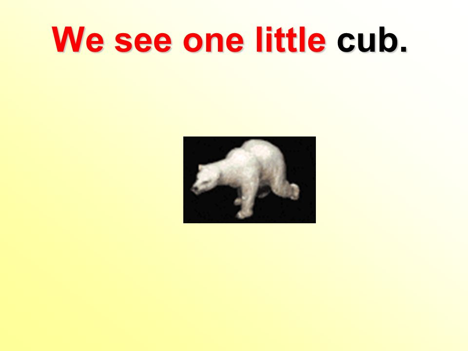 We see one little cub.