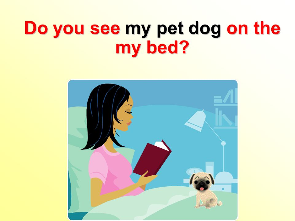Do you see my pet dog on the my bed