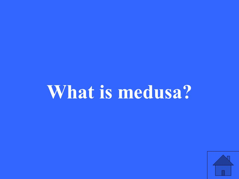 What is medusa