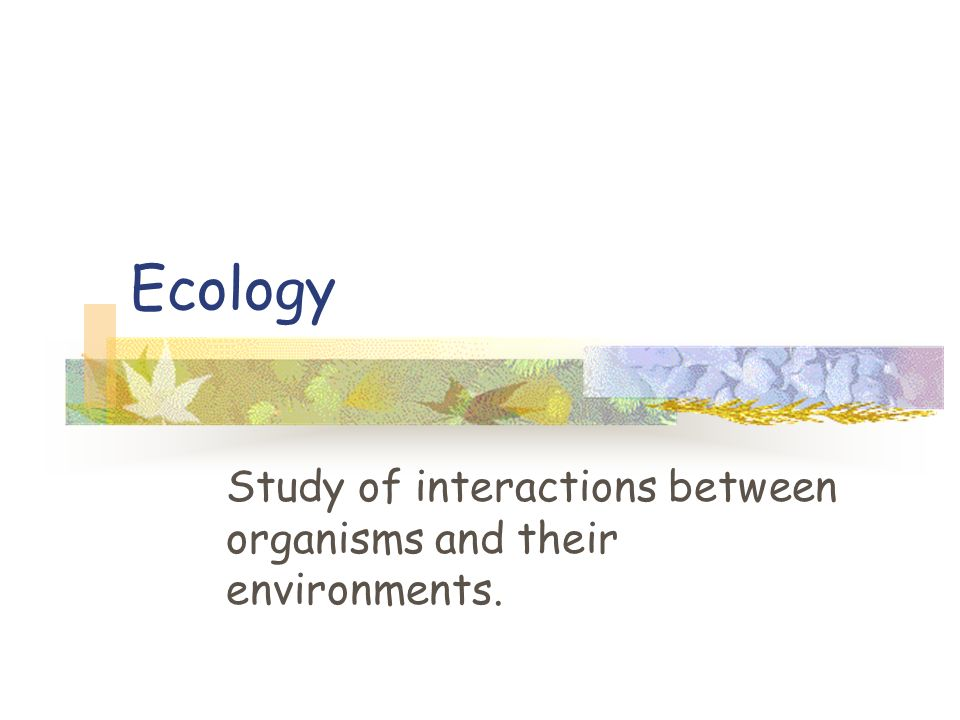 Ecology Study of interactions between organisms and their environments.