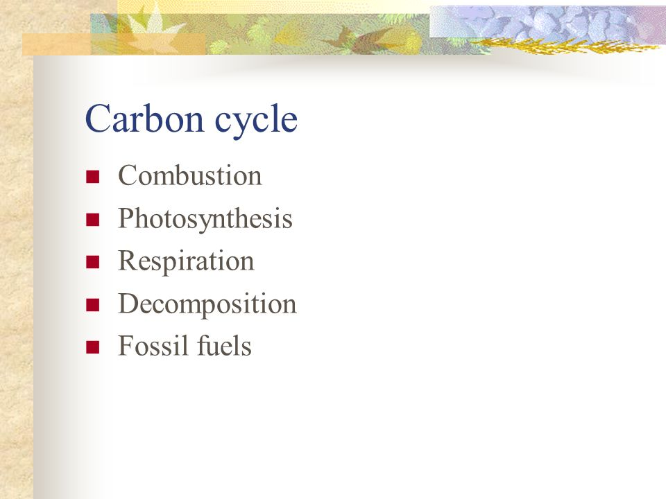 Carbon cycle Combustion Photosynthesis Respiration Decomposition Fossil fuels