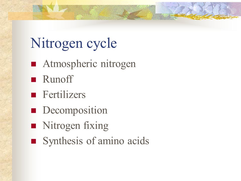 Nitrogen cycle Atmospheric nitrogen Runoff Fertilizers Decomposition Nitrogen fixing Synthesis of amino acids