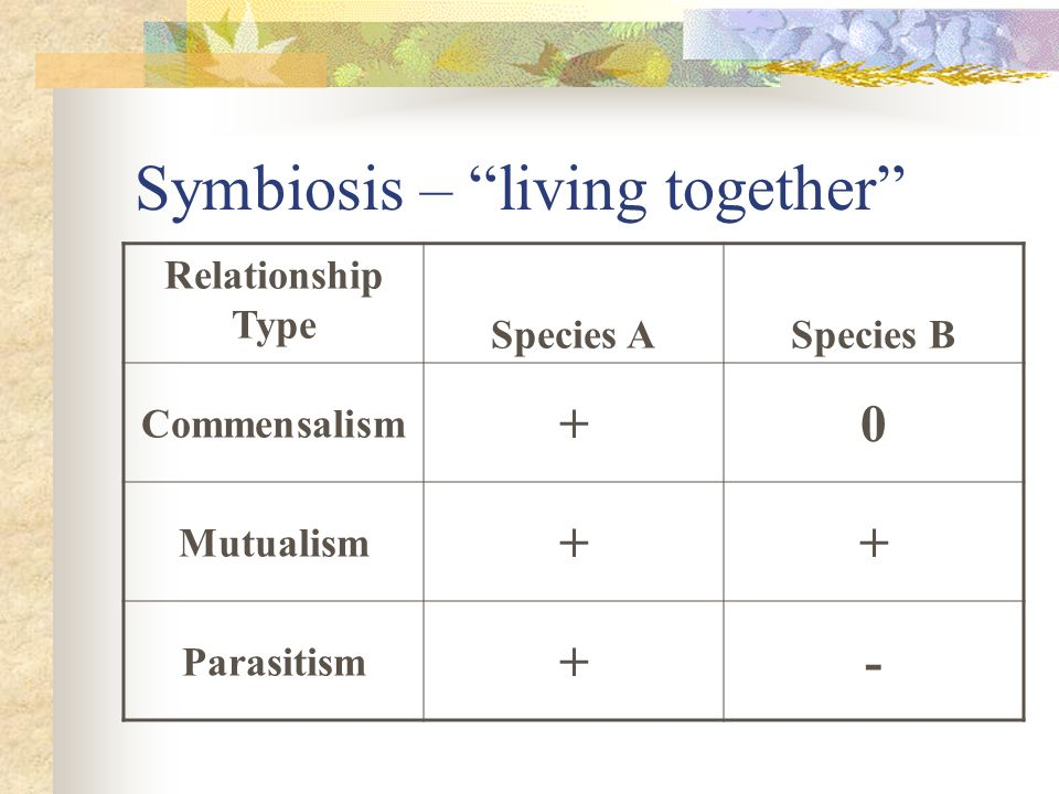 Symbiosis – living together Relationship Type Species ASpecies B Commensalism +0 Mutualism ++ Parasitism +-