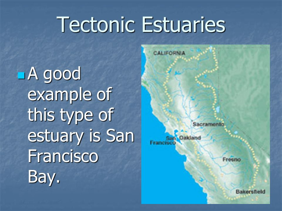 Tectonic Estuaries A good example of this type of estuary is San Francisco Bay.