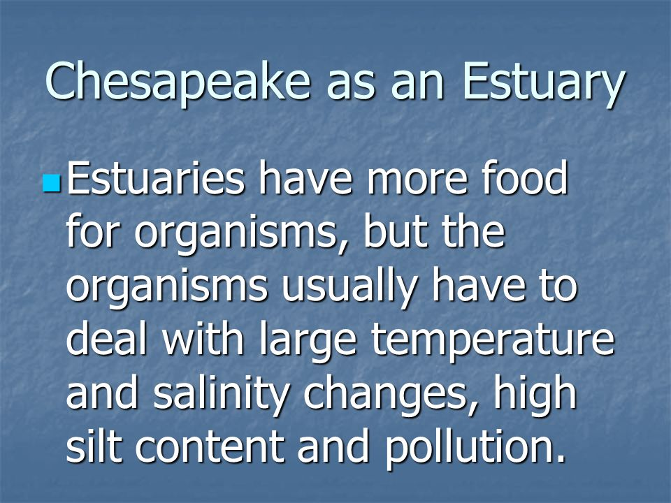 Chesapeake as an Estuary Estuaries have more food for organisms, but the organisms usually have to deal with large temperature and salinity changes, high silt content and pollution.