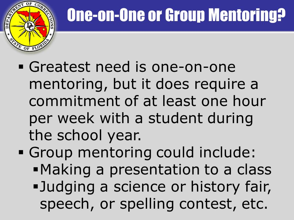 One-on-One or Group Mentoring.