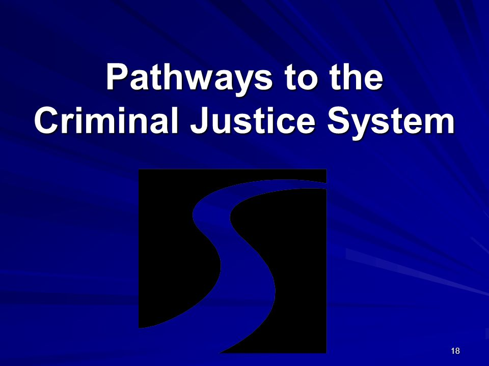 18 Pathways to the Criminal Justice System.