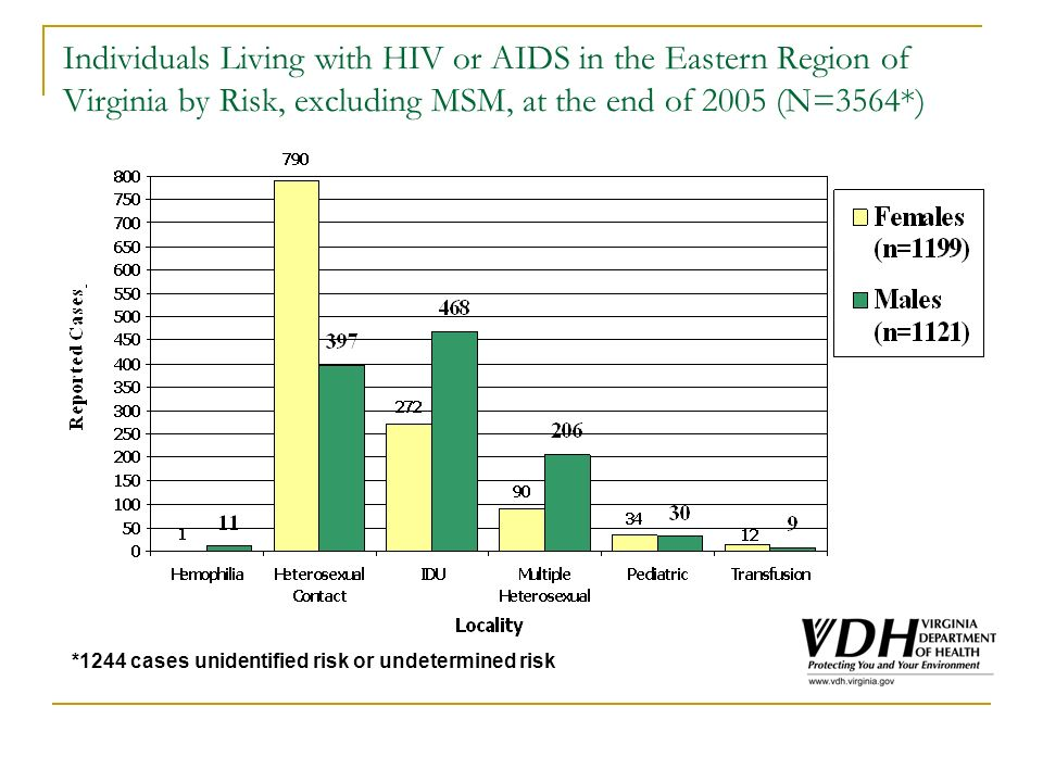 Individuals Living with HIV or AIDS in the Eastern Region of Virginia by Risk, excluding MSM, at the end of 2005 (N=3564*) *1244 cases unidentified risk or undetermined risk