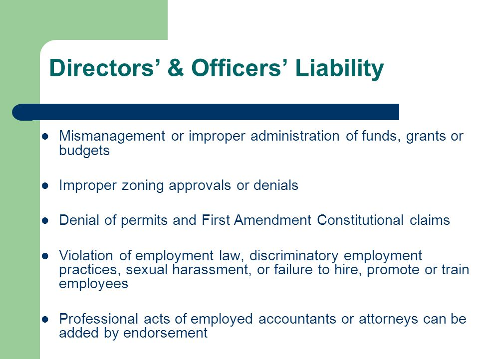 Directors & Officers Liability Mismanagement or improper administration of funds, grants or budgets Improper zoning approvals or denials Denial of permits and First Amendment Constitutional claims Violation of employment law, discriminatory employment practices, sexual harassment, or failure to hire, promote or train employees Professional acts of employed accountants or attorneys can be added by endorsement