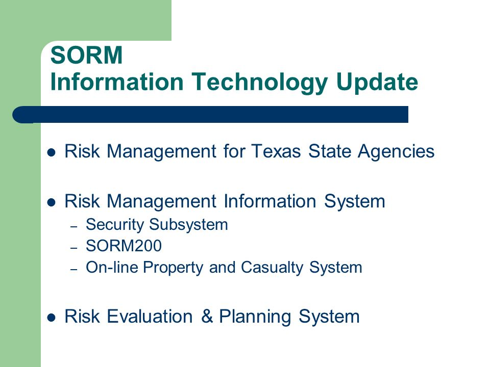 SORM Information Technology Update Risk Management for Texas State Agencies Risk Management Information System – Security Subsystem – SORM200 – On-line Property and Casualty System Risk Evaluation & Planning System