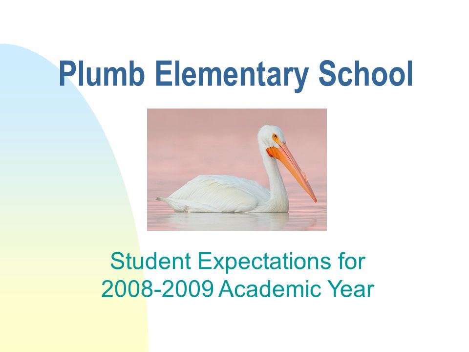 Plumb Elementary School Student Expectations for Academic Year