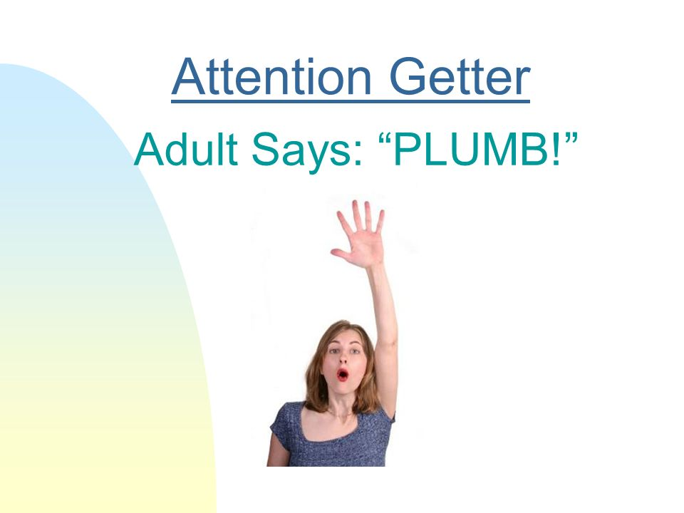 Attention Getter Adult Says: PLUMB!