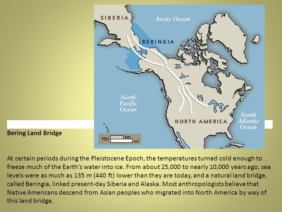 Bering Land Bridge At certain periods during the Pleistocene Epoch, the temperatures turned cold enough to freeze much of the Earths water into ice.