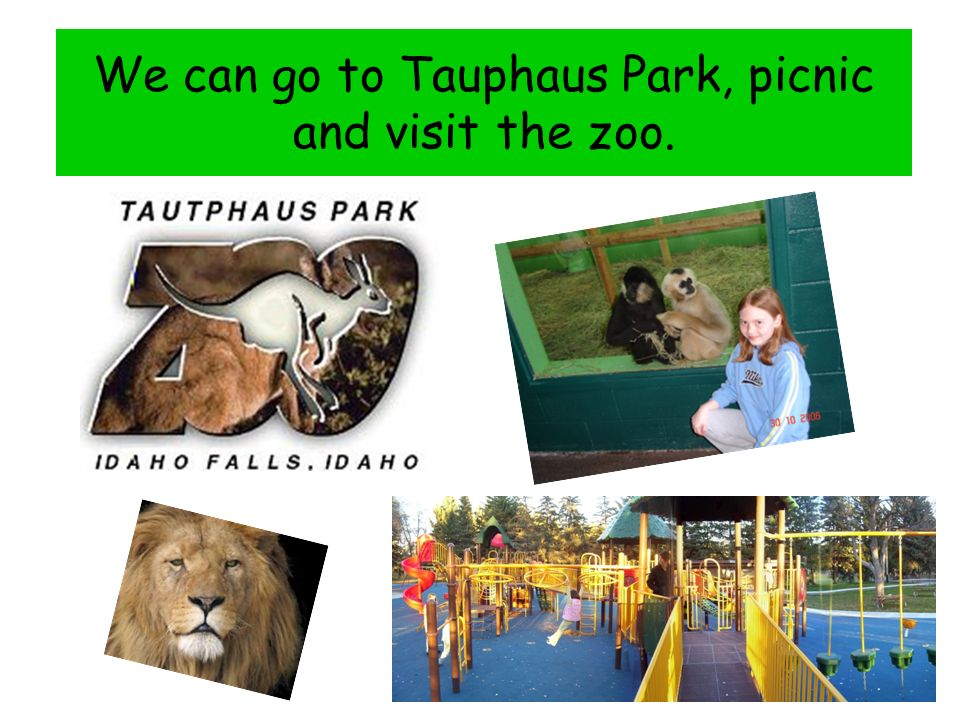 We can go to Tauphaus Park, picnic and visit the zoo.
