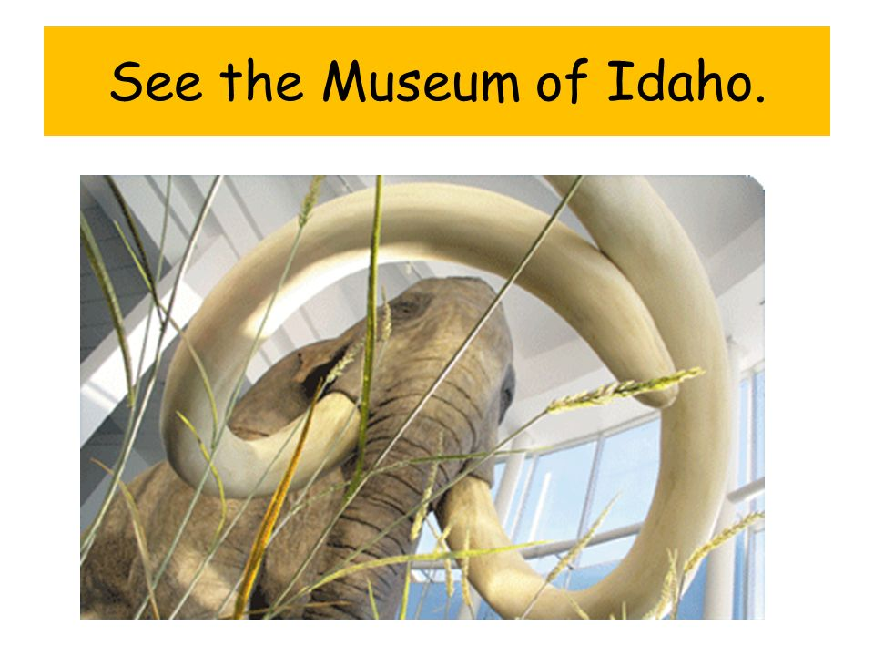 See the Museum of Idaho.