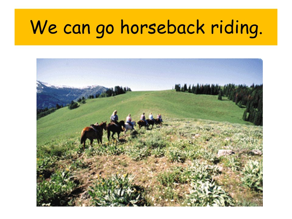 We can go horseback riding.