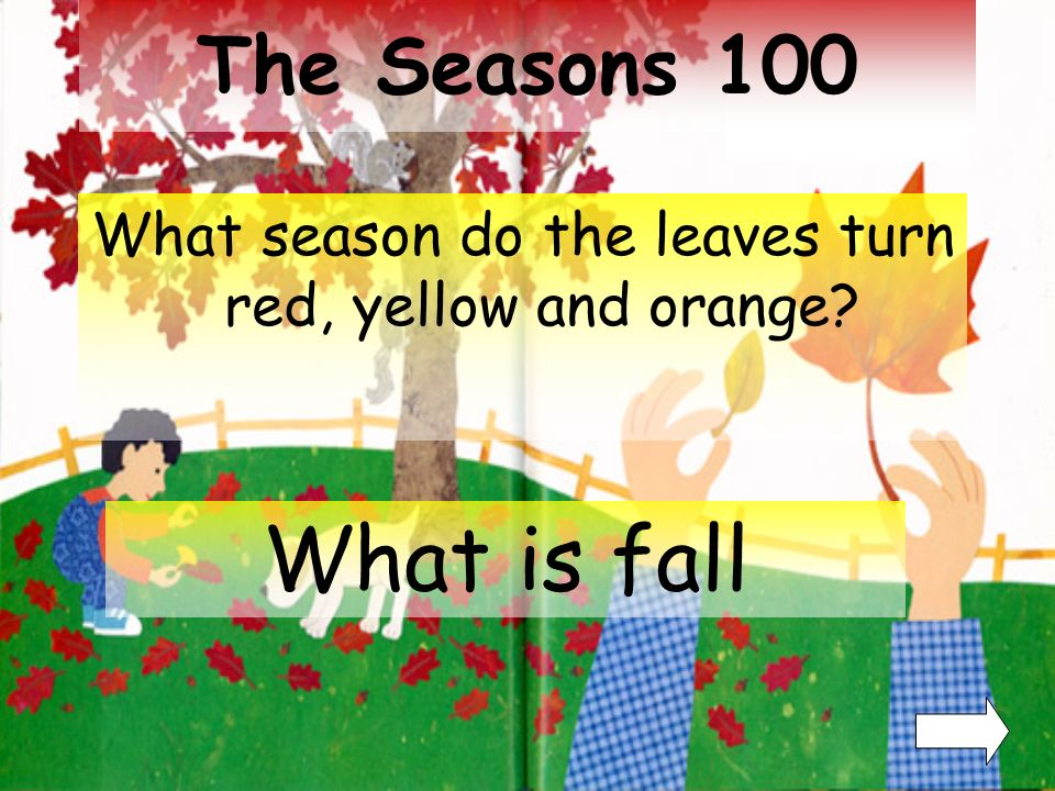 The Seasons 300 400 100 200 300 400 BONUS: 500500 100 200 300 400 100 200 Exit Differences Leaves can Have Fun things to do with Leaves 100 200