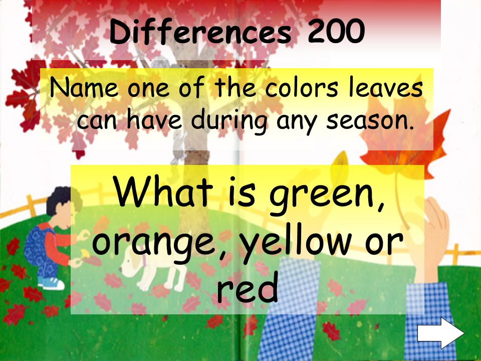 Differences 100 What are two different sizes leaves have What is Big and Small