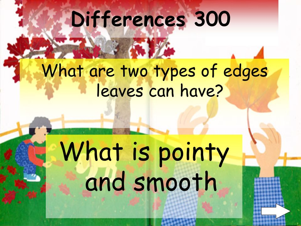 Differences 200 Name one of the colors leaves can have during any season.