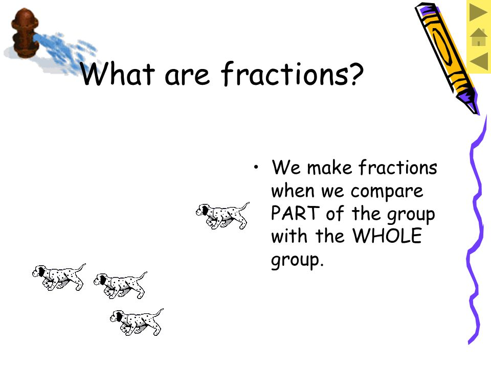 There are FOUR dogs. What are fractions