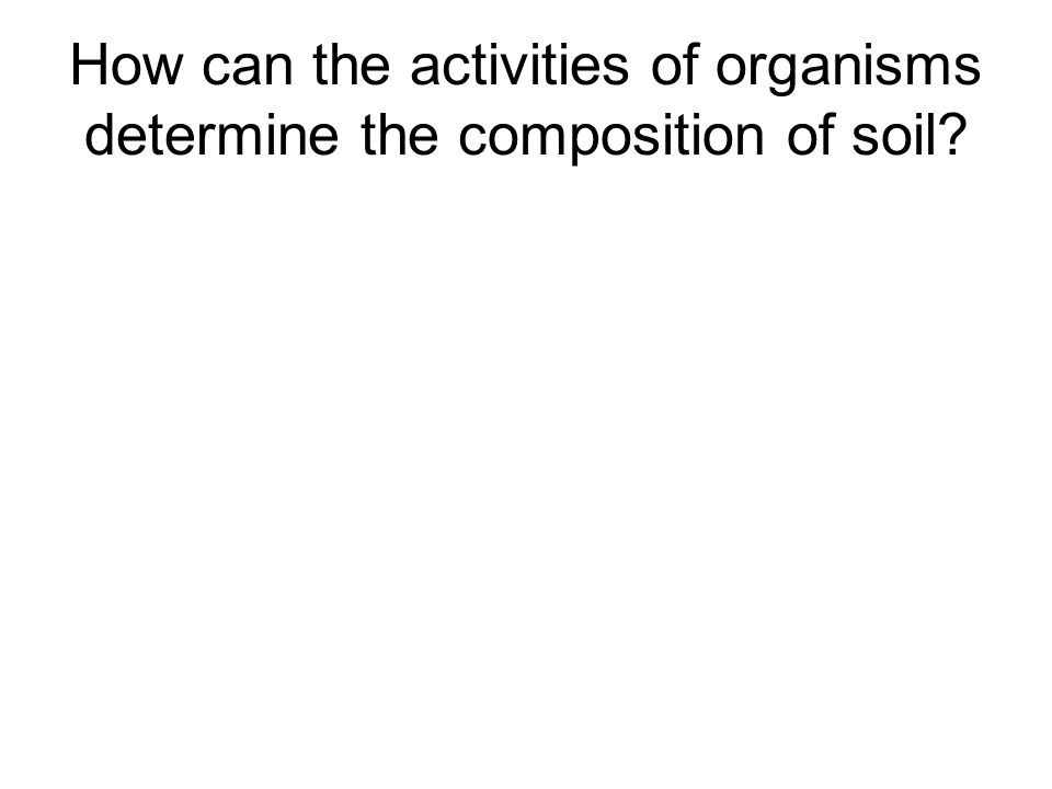 How can the activities of organisms determine the composition of soil
