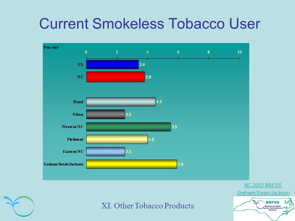 NC 2003 BRFSS Graham/Swain/Jackson Current Smokeless Tobacco User XI. Other Tobacco Products