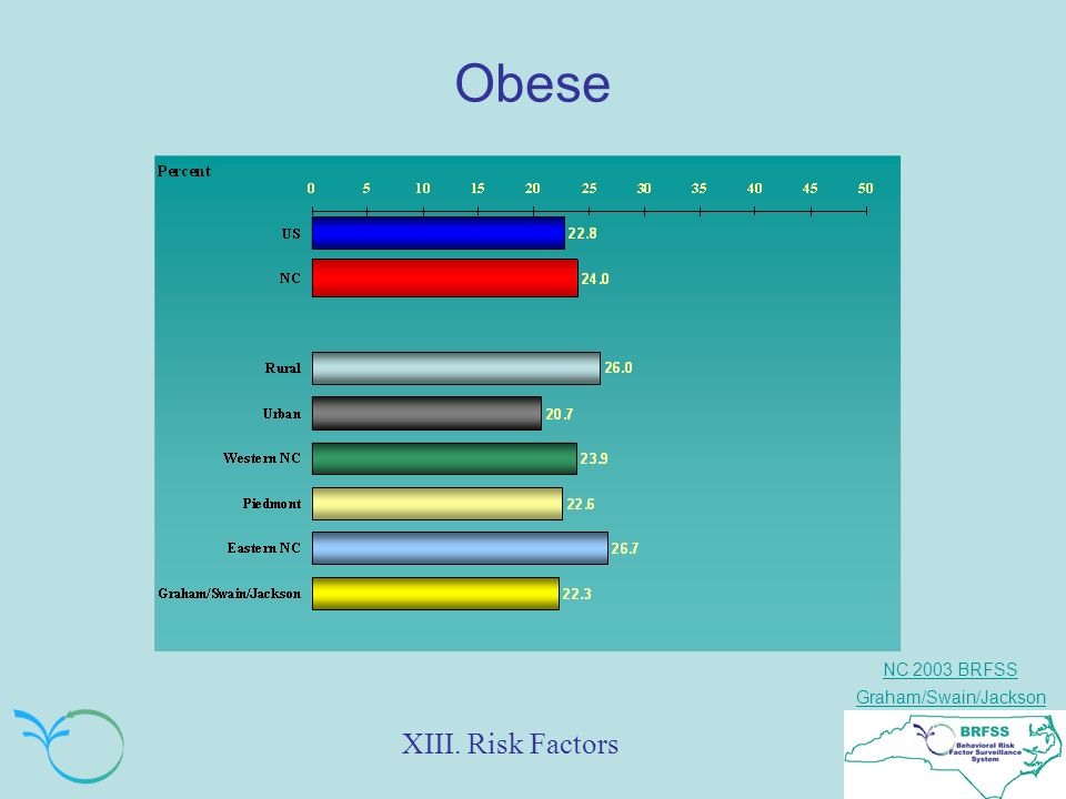NC 2003 BRFSS Graham/Swain/Jackson Obese XIII. Risk Factors