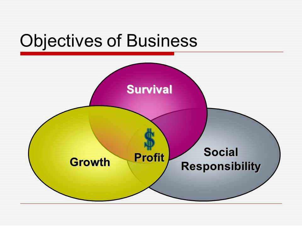 Objectives of Business Survival Growth Social Responsibility Profit