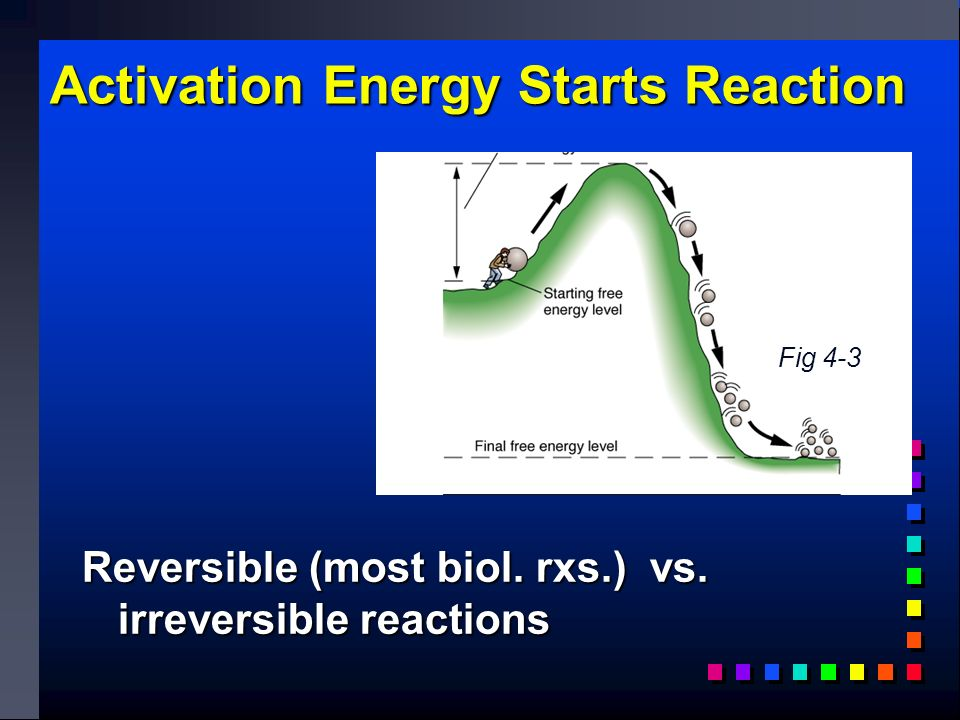Activation Energy Starts Reaction Reversible (most biol. rxs.) vs. irreversible reactions Fig 4-3
