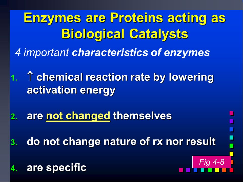 Enzymes are Proteins acting as Biological Catalysts 1.
