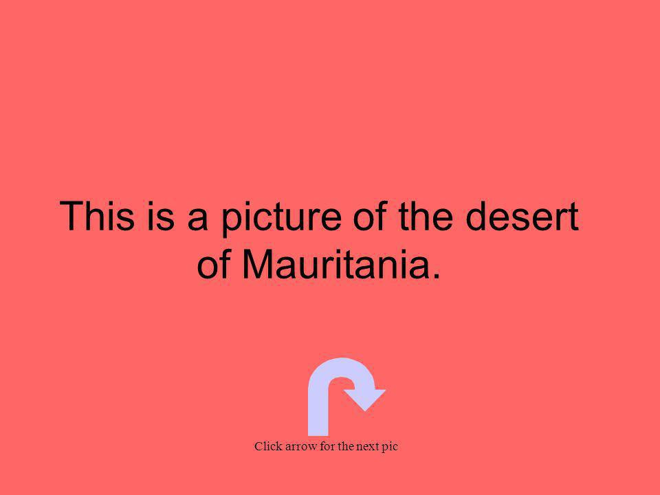 This is a picture of the desert of Mauritania. Click arrow for the next pic