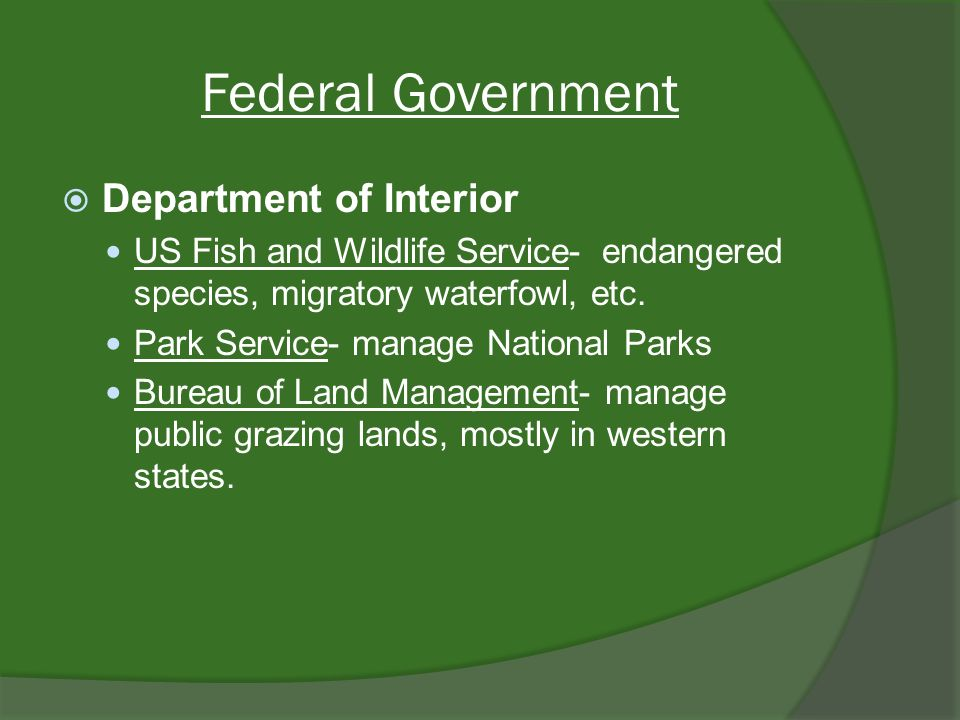 Federal Government Department of Interior US Fish and Wildlife Service- endangered species, migratory waterfowl, etc.