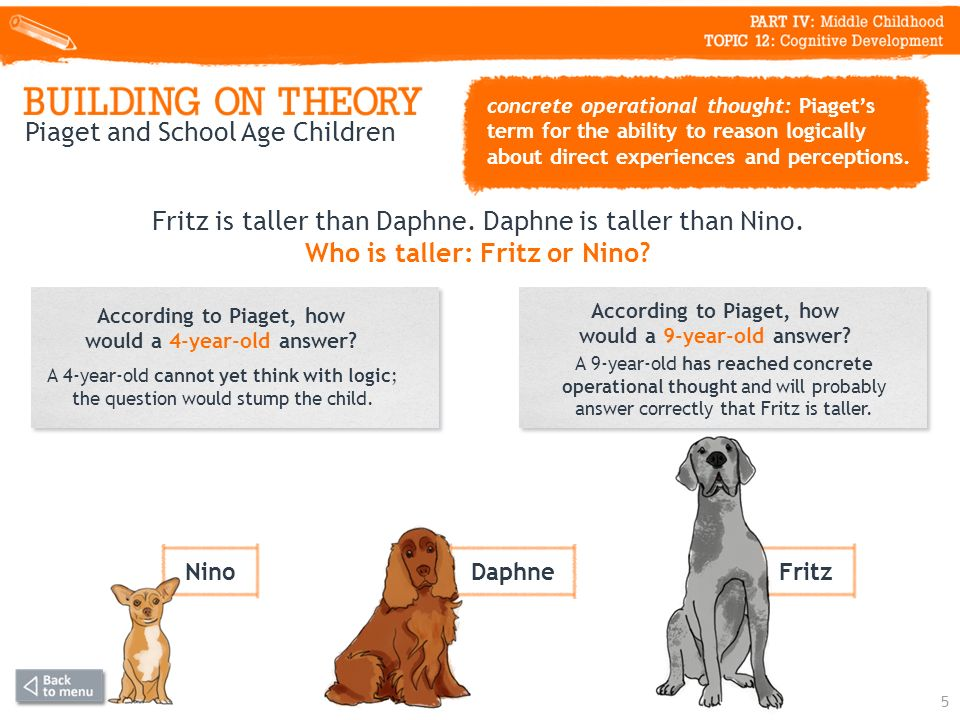 Fritz is taller than Daphne. Daphne is taller than Nino.
