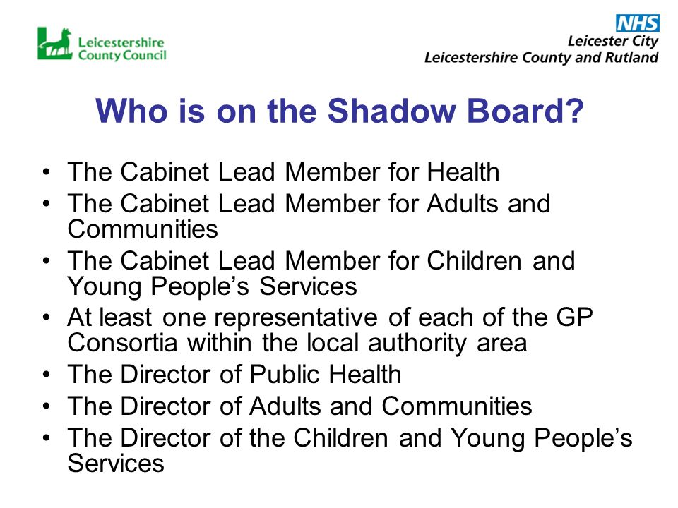 Who is on the Shadow Board.