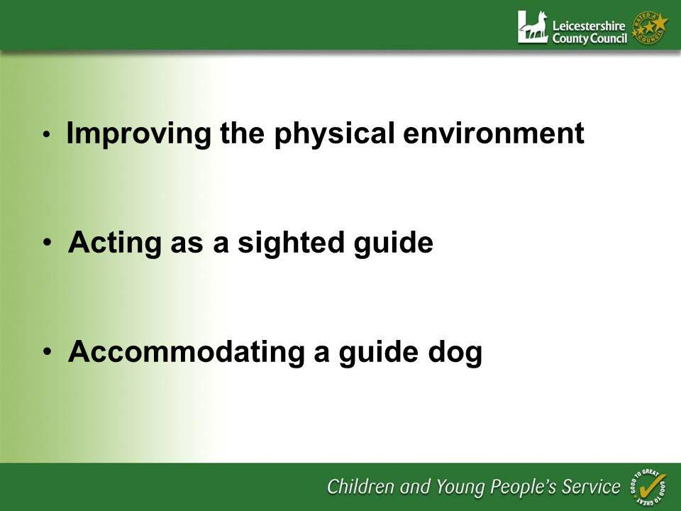 Improving the physical environment Acting as a sighted guide Accommodating a guide dog